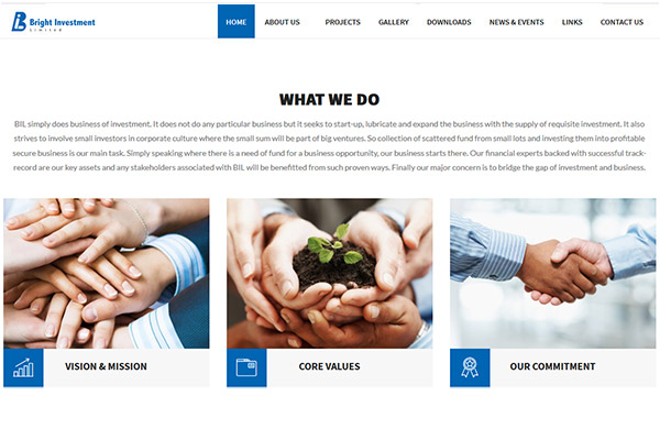 Bright Investment Pvt Ltd